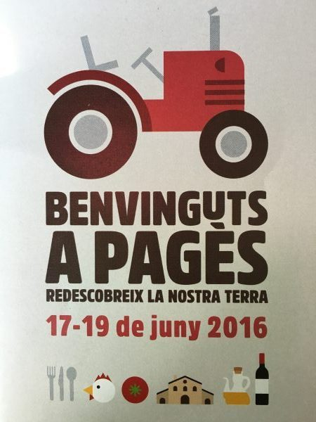 benvinguts-a-pages-Fundacion-Alicia