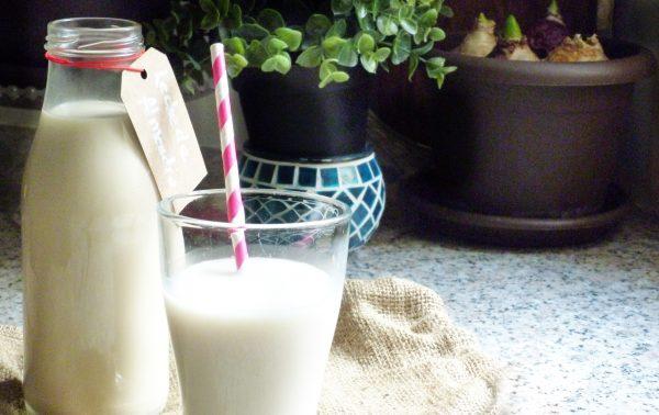 leche-de-almendras-receta-beneficios-propiedades-como-hacer-ecológica-5